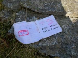 Wet logbook, Mynydd Tal-y-mignedd