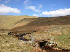 Footbridge, Fortingdale Bottom